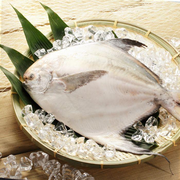 現撈野生白鯧/500-600g(尾)