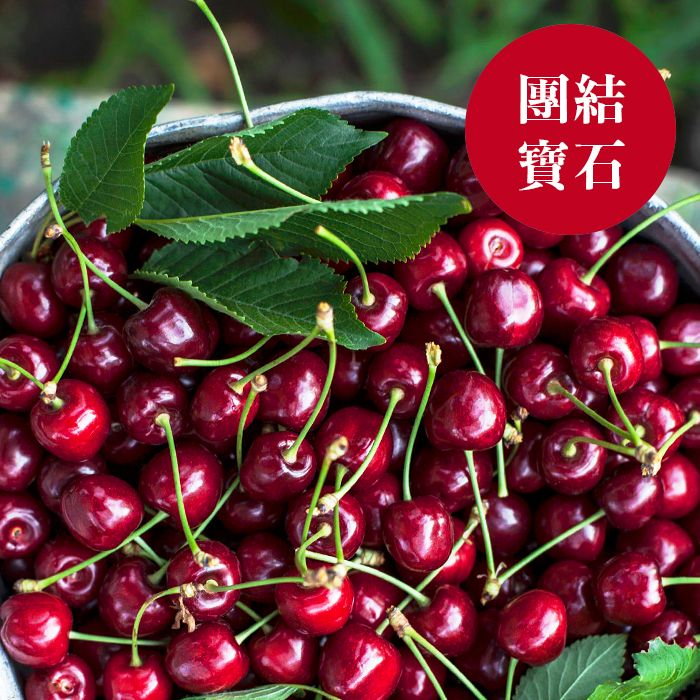 紐西蘭經典紅櫻桃{團結寶石箱}30mm或更大 P3