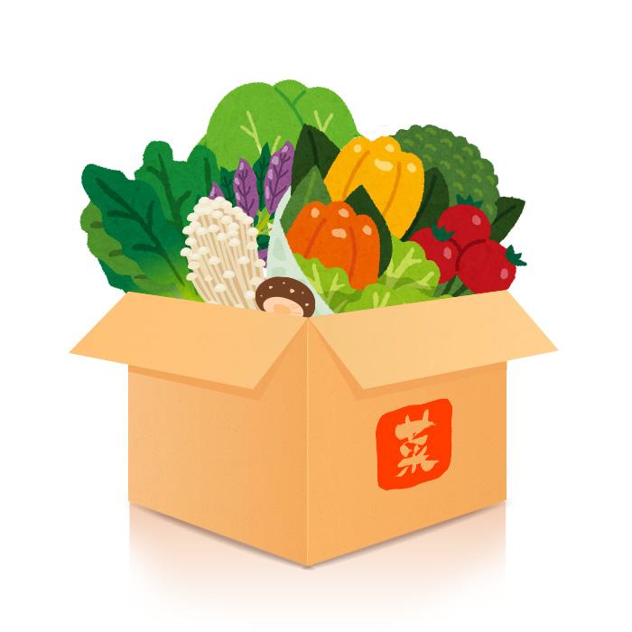 有機蔬菜箱